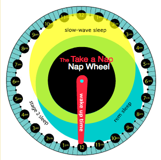 Tool for timing your power nap