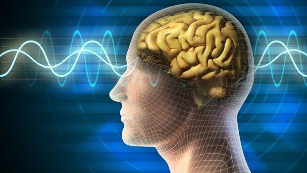 How Sleep Clears the Brain