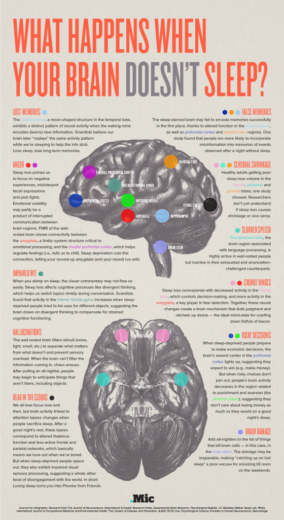 Your brain on no sleep infographic